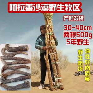 阿拉善野生肉苁蓉秋货油苁蓉条子3根/500g 168元,肉苁蓉