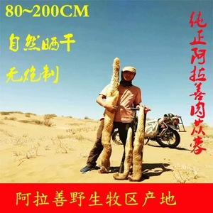 肉苁蓉阿拉善野生肉苁蓉十年野生肉苁蓉1米 2.6斤 含量高特级680/斤